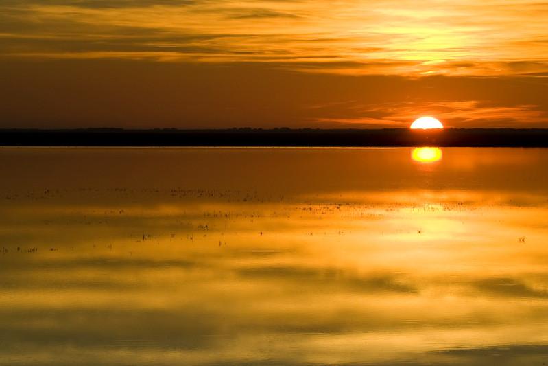 Donana marshland, Spain