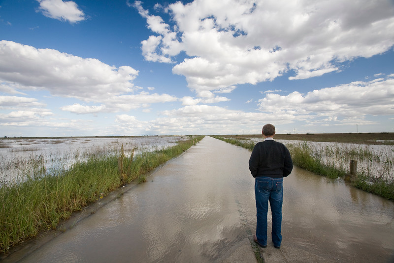 Man looking at a flooded road, Doñana marshland area, town of Isla Mayor, province of Seville, autonomous community of Andalusia, southwestern Spain
