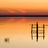 Sunset on Donana marshland, Spain