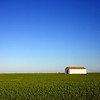 A barn on the rice fields, Isla Mayor, Donana marshland, Spain