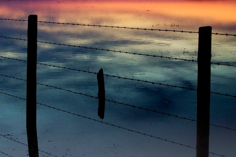 Fence, Donana marshland, Spain