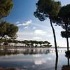 Laguna de San Lázaro, zona húmeda estacional en el entorno de Doñana. Villamanrique de la Condesa (Sevilla).