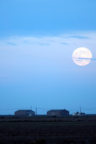 Full moon over a rural landscape, Doñana marshland area, town of Aznalcazar, province of Seville, autonomous community of Andalusia, southwestern Spain