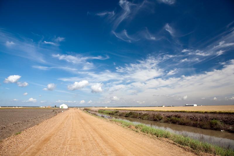 Track through the farmlands near Doñana marshland, town of Isla Mayor, province of Seville, autonomous community of Andalusia, southwestern Spain