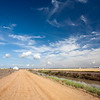Track through the farmlands near Doñana marshland, town of Isla Mayor, province of Seville, autonomous community of Andalusia, southwestern Spain
