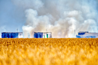 Stubble burning in the rice fields, Isla Mayor, Seville, Spain