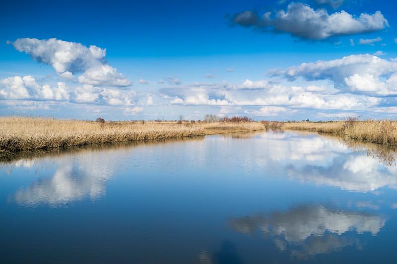 Brazo de la Torre, one of the branches of the Guadalquivir river in Doñana marshland, Isla Mayor, Seville, Spain