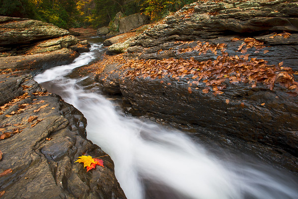 """""""Slide into Fall"""" - Ohiopyle State Park   Recommended Print sizes*:  4x6      8x12     12x18     16x24     20x30     24x36 *When ordering other sizes make sure to adjust the cropping at checkout*  © JP Diroll 2013"""
