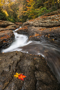 """""""Autumn Cascade"""" - Ohiopyle State Park   Recommended Print sizes*:  4x6      8x12     12x18     16x24     20x30     24x36 *When ordering other sizes make sure to adjust the cropping at checkout*  © JP Diroll 2013"""