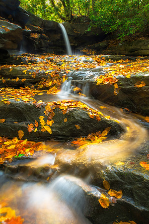 """""""Jonathan's Gold"""" - Ohiopyle State Park, PA   Recommended Print sizes*:  4x6      8x12     12x18     16x24     20x30     24x36 *When ordering other sizes make sure to adjust the cropping at checkout*  © JP Diroll 2014"""