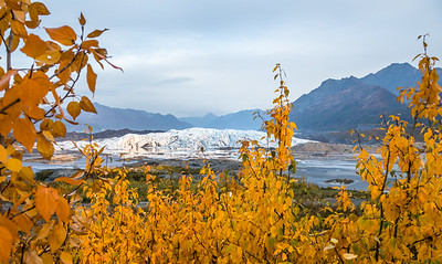 Smoke filled Matanuska Valley in September with autumn leaves.