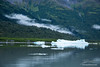 Low fog over glacial lake with icebergs in Alaska