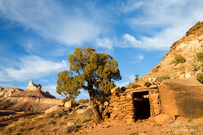 Small building and juniper tree below Temple Mountain.