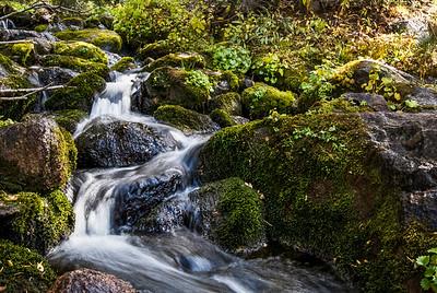 Stream running through mossy green rocks in Utah wilderness