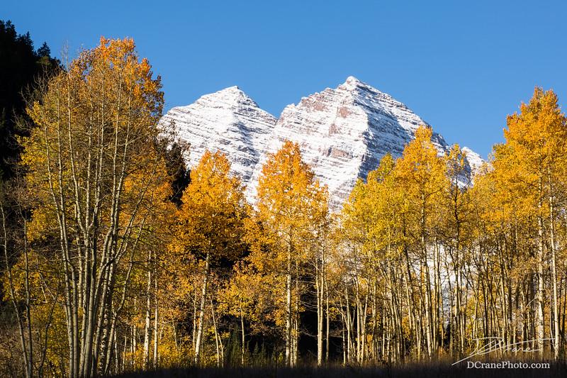 Maroon Bells over Aspen trees in fall