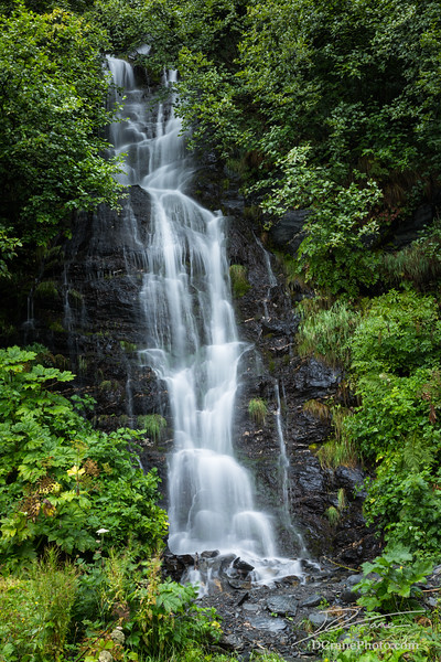 Small Waterfall Near Valdez Lake in Alaska Surrounded by Green Trees and Brush
