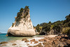 Sea stack and archway of Coromandel Peninsula in New Zealand