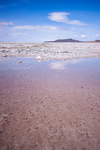 Shallow pink bacteria-filled water of the Great Salt Lake