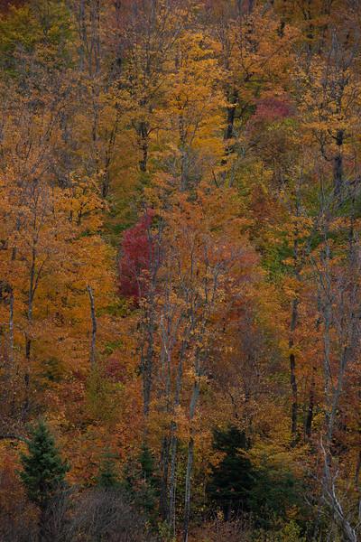 ME-2009-013: Jackman, Somerset County, ME, USA