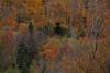ME-2009-012: Jackman, Somerset County, ME, USA