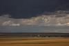MT-2013-010: , Judith Basin County, MT, USA