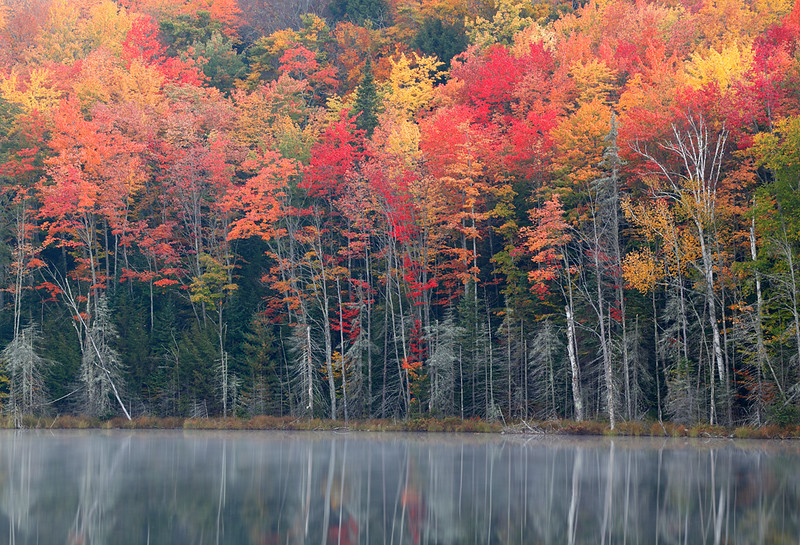 Red Jack Lake (Hiawatha National Forest - Upper Michigan)