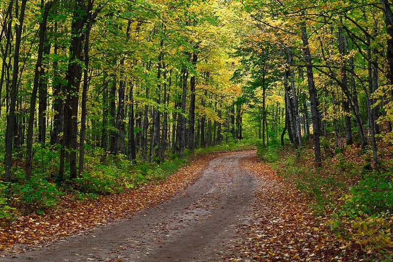 Road in Autumn (Alger County - Upper Michigan)