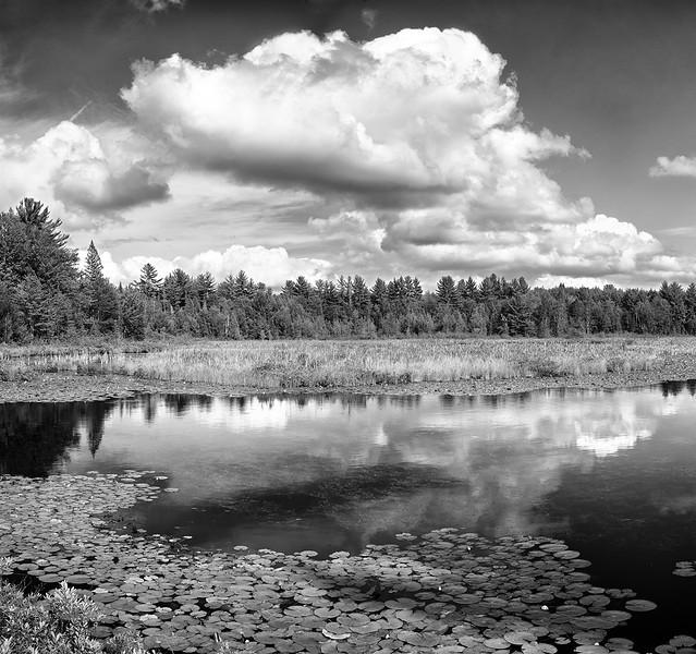 Hiawatha National Forest - Upper Michigan