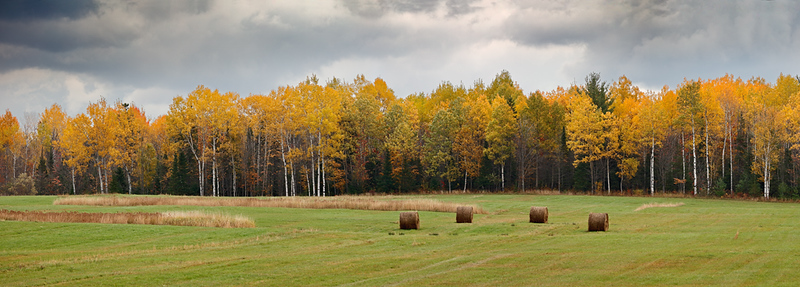 Hay Field - Bruce Crossing (Ontonagon County - Upper Michigan)
