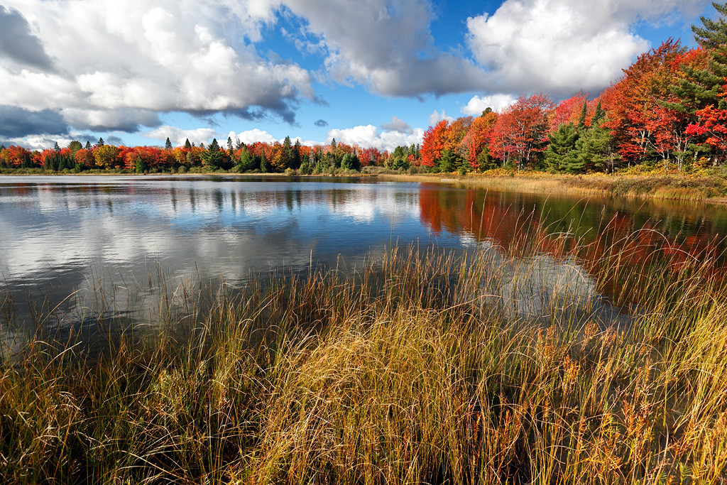 Otter Lake (Hiawatha National Forest - Upper Michigan)
