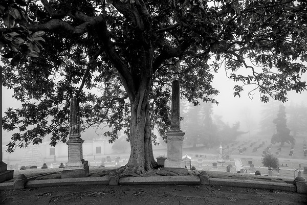 Mountain  View Cemetary