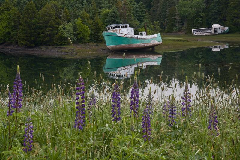 NB-2007-024: Campobello Island, Charlotte County, NB, Canada