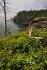 NB-2006-018: Campobello Island, Charlotte County, NB, Canada