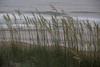 NC-2007-074: Surf City, Pender County, NC, USA