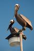 NC-2006-027: Kure Beach, New Hanover County, NC, USA