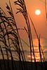 NC-2006-024: Kure Beach, New Hanover County, NC, USA