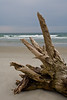 NC-2007-093: Masonboro Island, New Hanover County, NC, USA