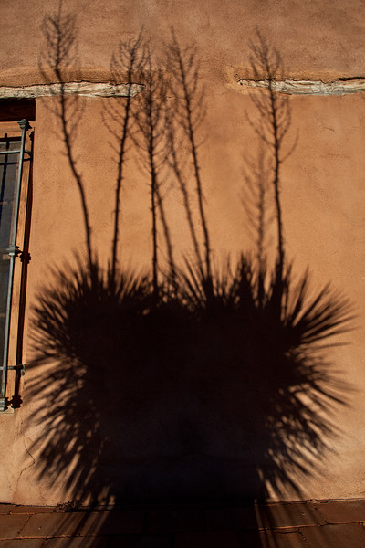 NM-2011-013: Mesilla, Dona Ana County, NM, USA