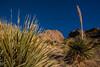 NM-2013-105: Soledad Canyon, Dona Ana County, NM, USA