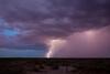NM-2011-217: , Dona Ana County, NM, USA