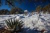 NM-2013-039: Bootheel, Coronado National Forest, NM, USA