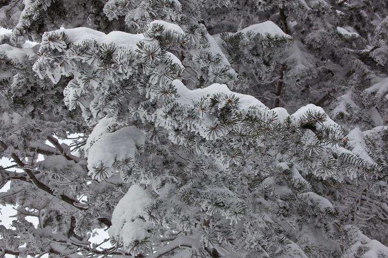 NM-2011-050: Benson Ridge, Otero County, NM, USA