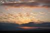 NM-2011-406: Santa Teresa, Dona Ana County, NM, USA