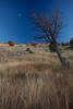 NM-2013-518: , Dona Ana County, NM, USA