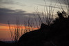 NM-2013-133: Organ Mountains, Dona Ana County, NM, USA
