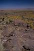 NM-2012-093: , Luna County, NM, USA