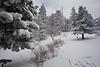 NM-2011-048: Benson Ridge, Otero County, NM, USA