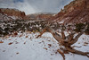 NM-2013-157: Ghost Ranch, Rio Arriba County, NM, USA
