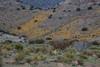 NM-2012-024: Steins, Hidalgo County, NM, USA