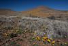NM-2012-030: Steins, Hidalgo County, NM, USA